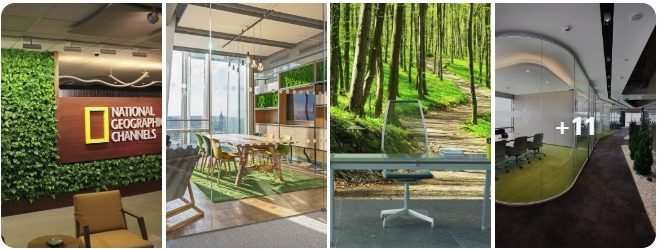 The Nature Inspired Office Commercial Interior Design Minneapolis